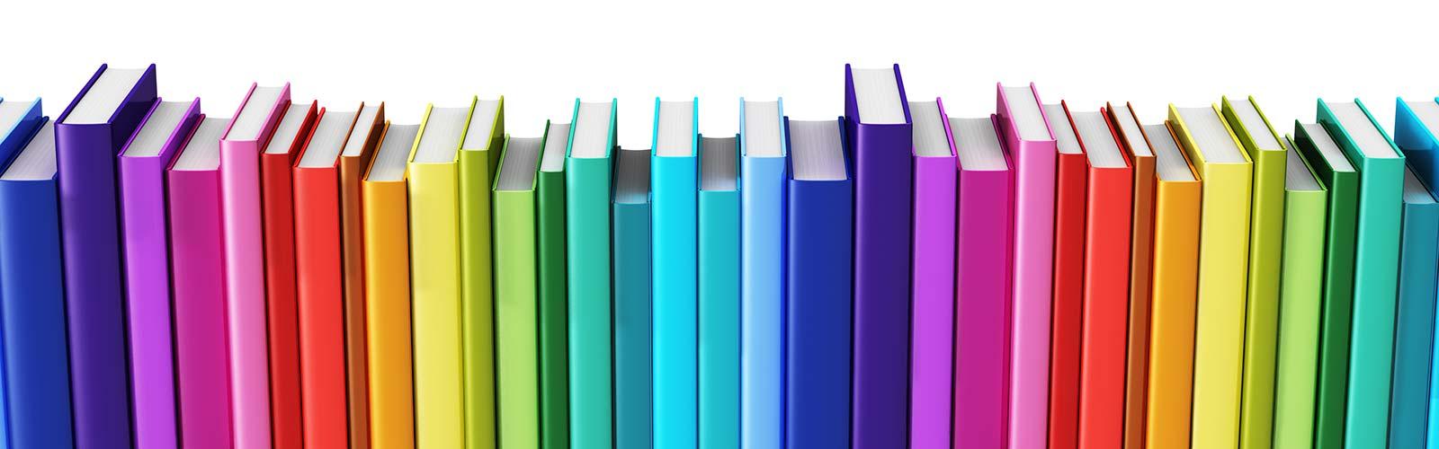 Buchhandlung Driemeier Bestseller